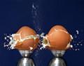 Eggsplosion!