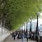 12 London Walks
