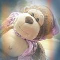 Road Trip Monkey