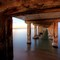 under the dromana pier