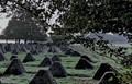 Siegfried Line in Germany