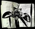 literary flower