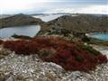 Levrnaka island..