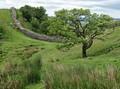 Wall - Hadrian's Wall