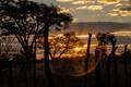 Negweshla campsite in Hawange, Zimbabwe