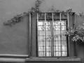 fenced-window-1