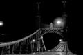 Szabadság híd (Freedom Bridge), Budapest, Hungary