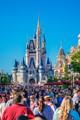 Disney World Busy