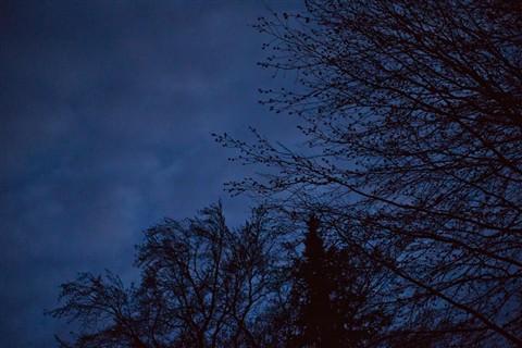 EveningSky-4
