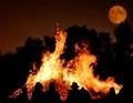 Samhain Bon Fire