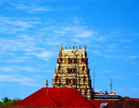2011_1107photo10178 copy