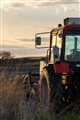 Tractor in sunset time