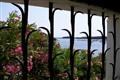 View through Dali's window.