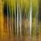 grand Tetons 2013-66-Edit-2-2