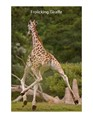 This giraffe just barely cleared the ground with all four hooves. Just barely, but she did it.