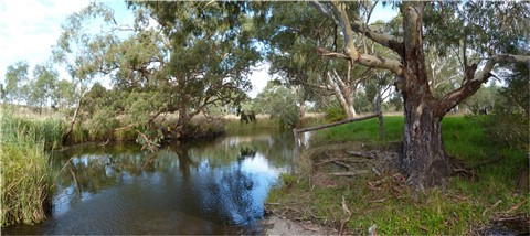 Finniss River @ Currency Creek