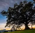 Observatory Hill , Sydney