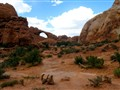 Arches National Park - Desert
