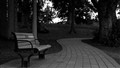Pathway and the bench, The mystery of life.