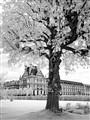 Paris in infrared