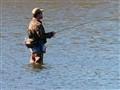 Fishing the DesPlaines River