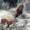Na_cachoeira