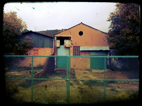 IMG_20121118_083143_Dirt
