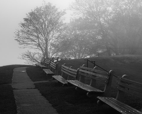 Benches II