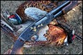1940's vintage .410 Winchester Model 42 with birds