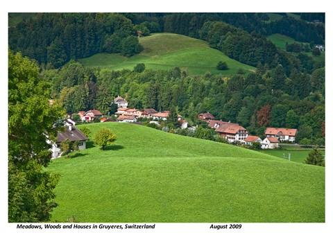 Green Scenery1
