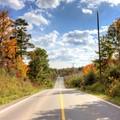 Autumn Road to Nowhere