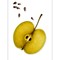 Apple_0872 seed FR