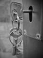 Key + Ring on a Keyring