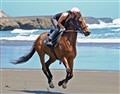 A Gallop On The Beach