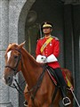 Mounted Guard at Istana Negara