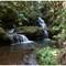 Onomea Falls 25