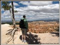 Surveying the wonders of Bryce Canyon