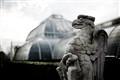 Griffon at Kew Gardens
