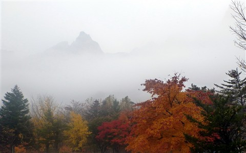 설악산 단풍 (Autumn of Seoraksan)