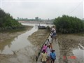 Muddy Journey