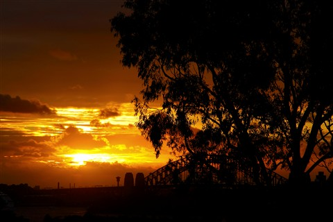 Sunset from Taronga