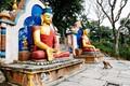 Buddha statues in Kathmandu, Nepal depicted with symbolic gestures: Varadra Mudra (Generosity) and Bhumisparsha Mudra (Awakening).