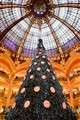 Xmas tree under the dome of Galeries Lafayette, Paris