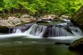 Moving Water - Smoky Mountain National Park