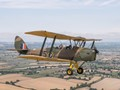 Tiger Moth from a Tiger Moth