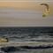 Guincho Beach - Kite Surf