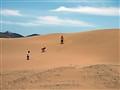 Inside dune