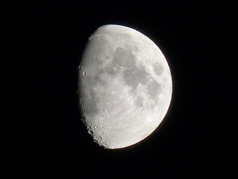 Comparative Moon Shot with FZ150