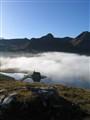 Fog Express