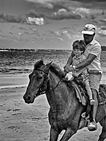HorsePortillo1070424